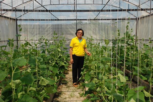 สหกรณ์การเกษตรสบปราบ: ต่อยอดธุรกิจ- ปั้นพืชเป็นเงิน