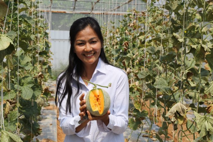 จากผู้หญิงธรรมดา…สู่เกษตรกร YSF เจ้าของสวนเมล่อน แบบฉบับเกษตร 4.0