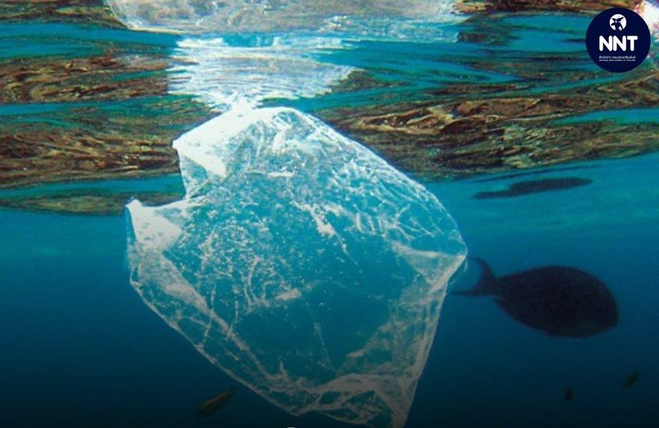 ทะเลไทย มีปริมาณขยะไหลลงสู่ทะเล ลดลง หลังนำขยะกลับมาใช้ประโยชน์ใหม่เพิ่มขึ้น 25 เปอร์เซนต์!!