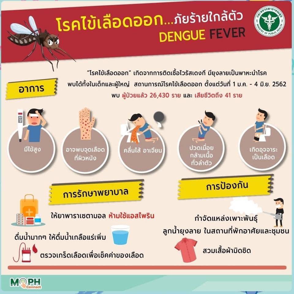 กระทรวงสาธารณสุข ชวนยึดหลัก 3 เก็บ ปลอดยุงลาย ปลอดไข้เลือดออก